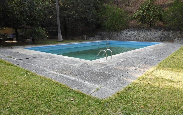 Foto de rancho en venta en  , amacuzac, amacuzac, morelos, 1700020 No. 16