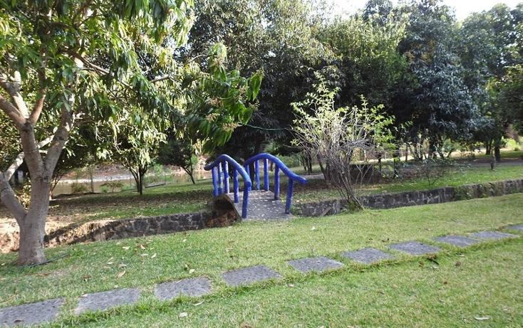 Foto de rancho en venta en  , amacuzac, amacuzac, morelos, 1700020 No. 17