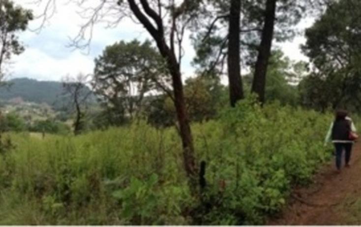 Foto de terreno habitacional en venta en, amanalco de becerra, amanalco, estado de méxico, 829617 no 03