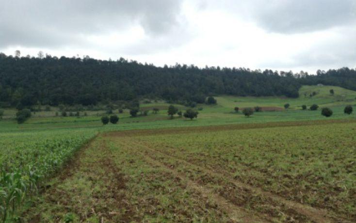 Foto de terreno habitacional en venta en, amanalco de becerra, amanalco, estado de méxico, 829721 no 04