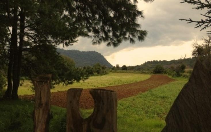Foto de terreno habitacional en venta en cuarta sección s/n san bartolo , amanalco de becerra, amanalco, méxico, 2718159 No. 02