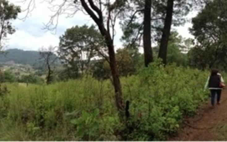 Foto de terreno habitacional en venta en cuarta sección s/n san bartolo , amanalco de becerra, amanalco, méxico, 2718159 No. 03