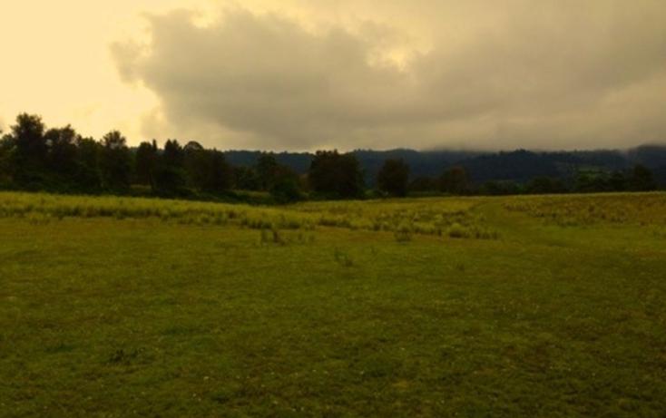 Foto de terreno habitacional en venta en  , amanalco de becerra, amanalco, m?xico, 829617 No. 01