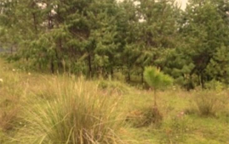 Foto de terreno habitacional en venta en  , amanalco de becerra, amanalco, m?xico, 829617 No. 04