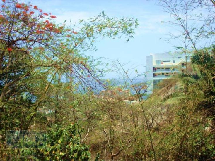 Foto de terreno habitacional en venta en  103, amapas, puerto vallarta, jalisco, 1800837 No. 02