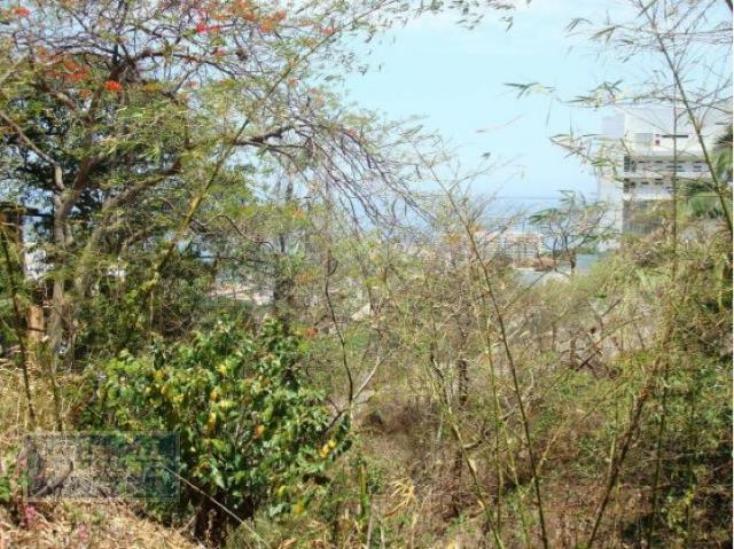 Foto de terreno habitacional en venta en  103, amapas, puerto vallarta, jalisco, 1800837 No. 04