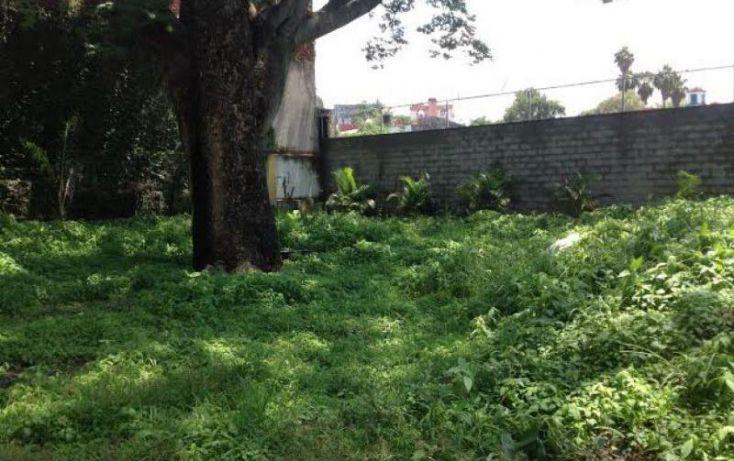 Foto de terreno habitacional en venta en , amatitlán, cuernavaca, morelos, 2047014 no 06