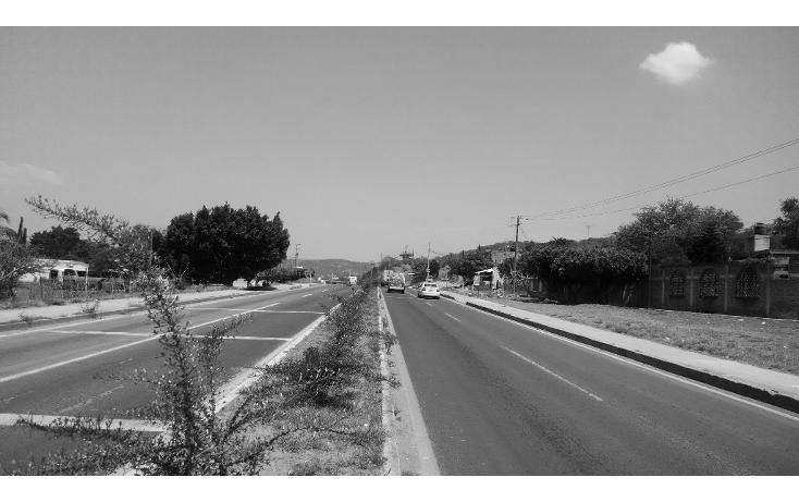 Foto de terreno comercial en venta en  , amatitlanes, izúcar de matamoros, puebla, 1086539 No. 04