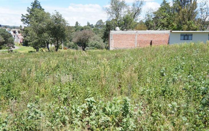 Foto de terreno habitacional en venta en  , amaxac de guerrero, amaxac de guerrero, tlaxcala, 1278067 No. 06