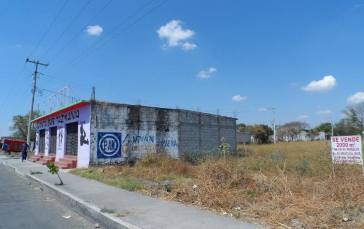 Foto de terreno comercial en venta en  , amayuca, jantetelco, morelos, 1782656 No. 04