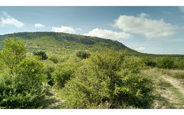 Foto de terreno habitacional en venta en  , amazcala, el marqués, querétaro, 1370663 No. 04