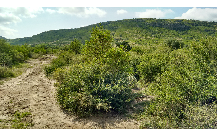 Foto de terreno habitacional en venta en  , amazcala, el marqués, querétaro, 1370663 No. 05