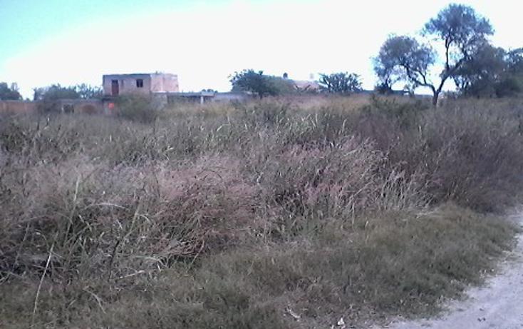 Foto de terreno habitacional en venta en  , ameca centro, ameca, jalisco, 1860170 No. 07