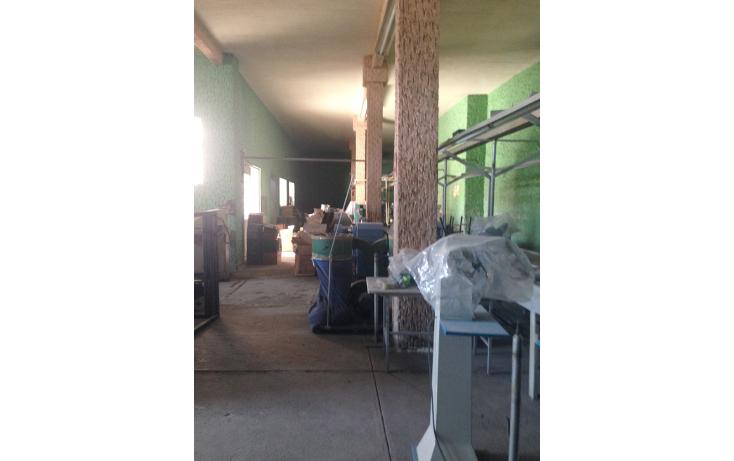 Foto de edificio en venta en  , americana, guadalajara, jalisco, 1379059 No. 07