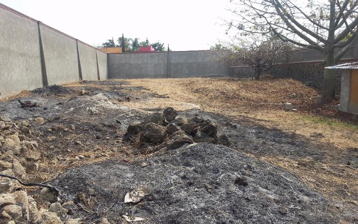 Foto de terreno habitacional en venta en  , ampliación 3 de mayo, emiliano zapata, morelos, 1079369 No. 03
