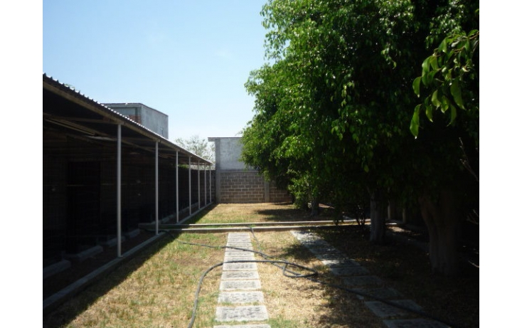 Foto de rancho en venta en, ampliación lázaro cárdenas, cuautla, morelos, 449034 no 30