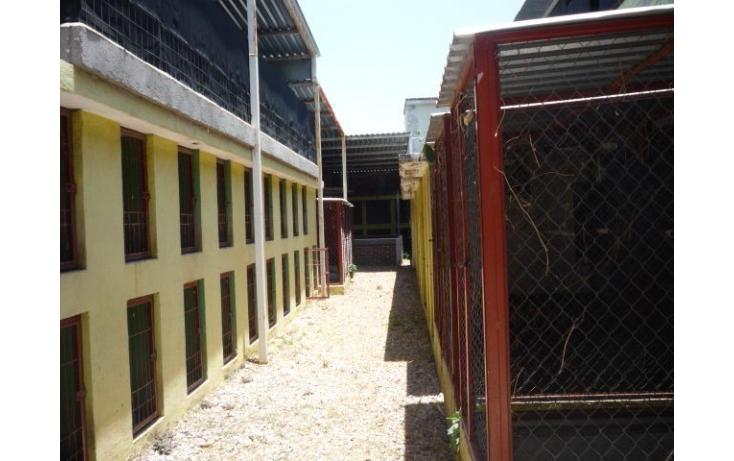 Foto de rancho en venta en, ampliación lázaro cárdenas, cuautla, morelos, 449034 no 35