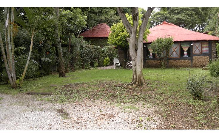 Foto de casa en venta en  , ampliación ocotepec, cuernavaca, morelos, 1659908 No. 01