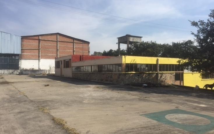 Foto de nave industrial en renta en  , ampliaci?n plan de ayala, cuautla, morelos, 1577513 No. 10
