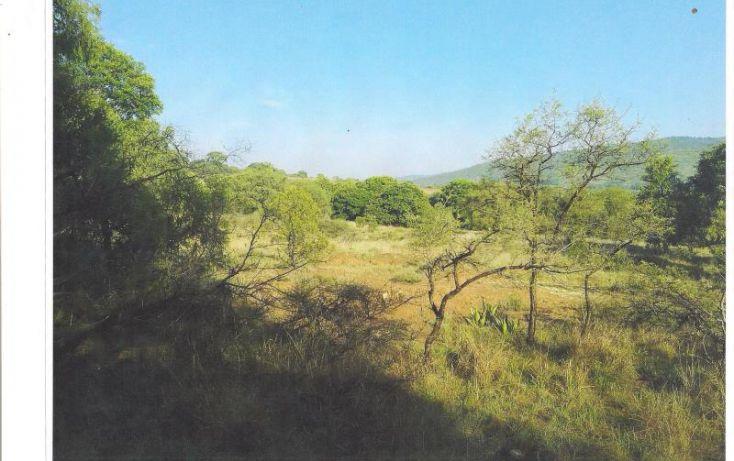 Foto de terreno habitacional en venta en, ampliación san lorenzo, amozoc, puebla, 2047062 no 01