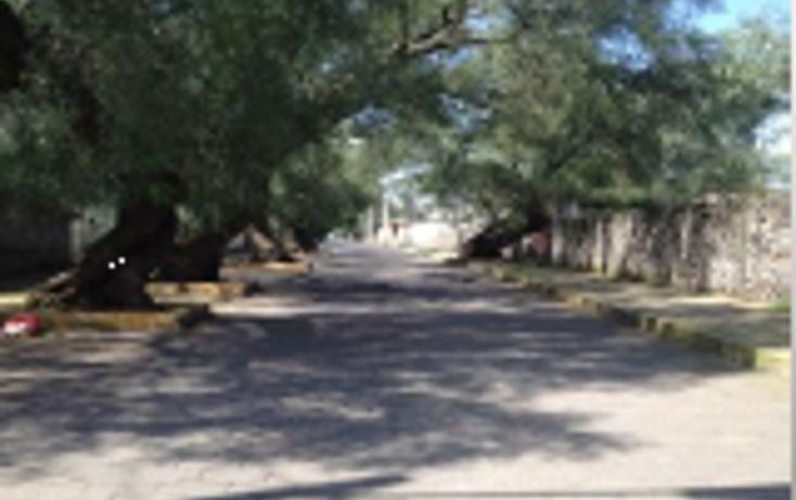Foto de terreno habitacional en venta en  , ampliaci?n tepepan, xochimilco, distrito federal, 837193 No. 03