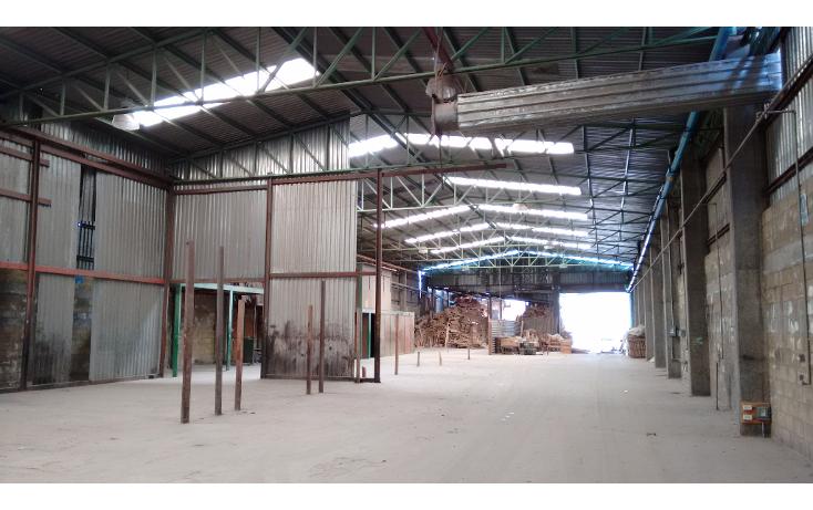 Foto de nave industrial en venta en  , ampliación tezoyuca, tezoyuca, méxico, 1111915 No. 02