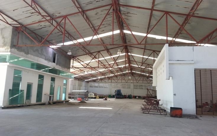 Foto de nave industrial en renta en  , anacleto canabal 1a sección, centro, tabasco, 596217 No. 07