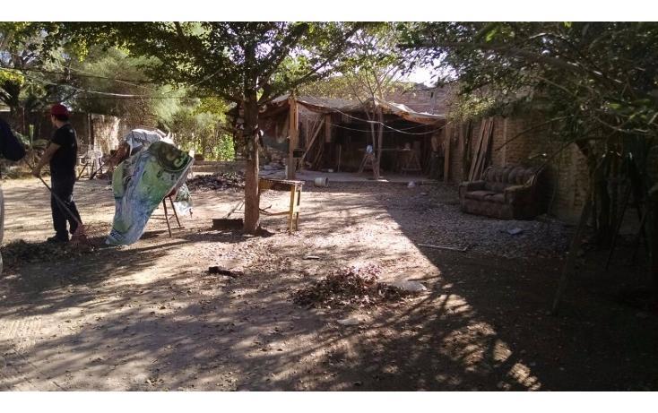 Foto de casa en venta en  , anáhuac, ahome, sinaloa, 1746619 No. 03