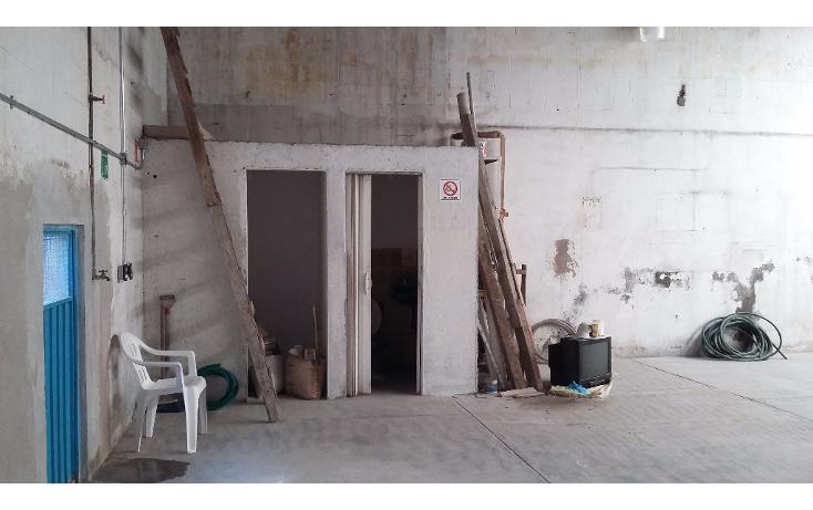 Foto de nave industrial en renta en  , anahuac ii secci?n, miguel hidalgo, distrito federal, 1557344 No. 02