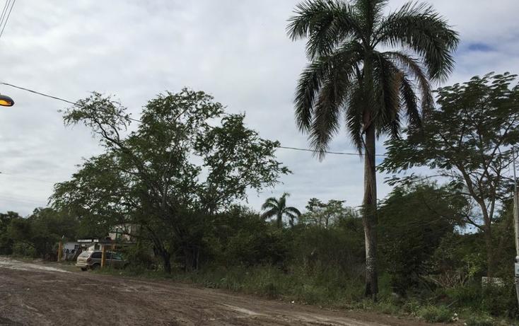 Foto de terreno habitacional en venta en  , anáhuac, pueblo viejo, veracruz de ignacio de la llave, 1265063 No. 02