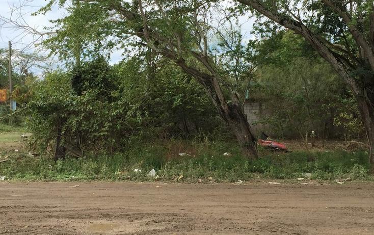 Foto de terreno habitacional en venta en  , anáhuac, pueblo viejo, veracruz de ignacio de la llave, 1265063 No. 03