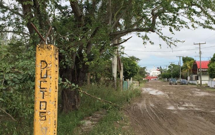 Foto de terreno habitacional en venta en  , anáhuac, pueblo viejo, veracruz de ignacio de la llave, 1265063 No. 04