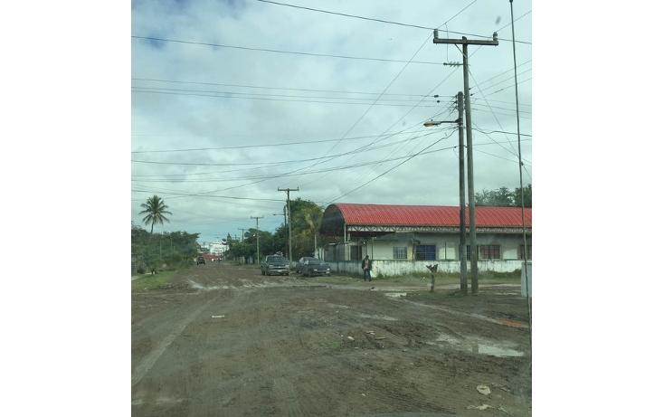 Foto de terreno habitacional en venta en  , anáhuac, pueblo viejo, veracruz de ignacio de la llave, 1265063 No. 05