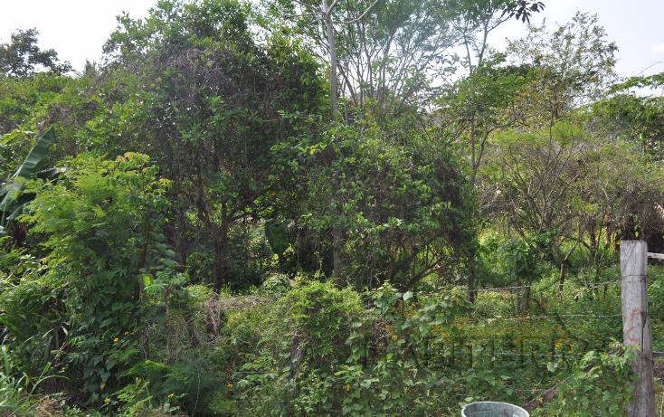 Foto de terreno habitacional en venta en  , anáhuac, tuxpan, veracruz de ignacio de la llave, 1477105 No. 02