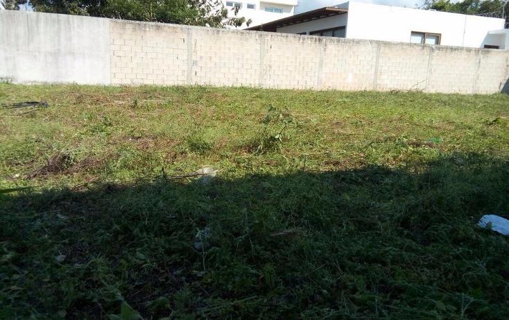 Foto de terreno habitacional en venta en  , andara, othón p. blanco, quintana roo, 1107893 No. 02