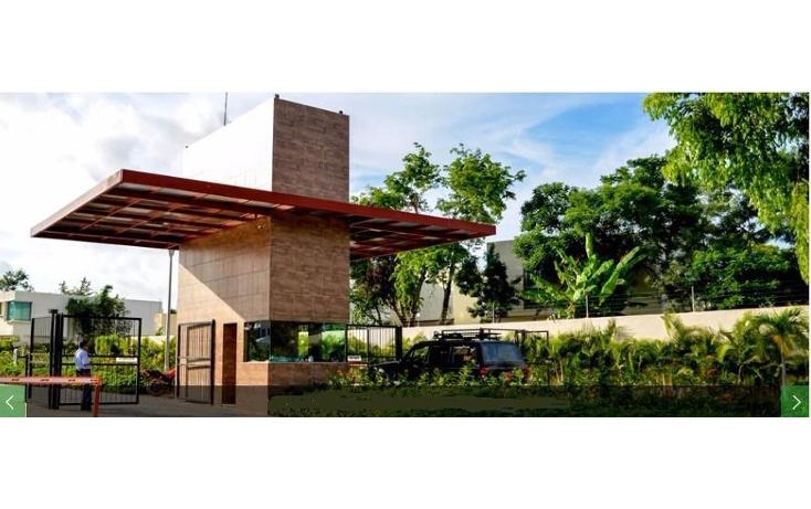 Foto de terreno habitacional en venta en  , andara, othón p. blanco, quintana roo, 1107893 No. 05