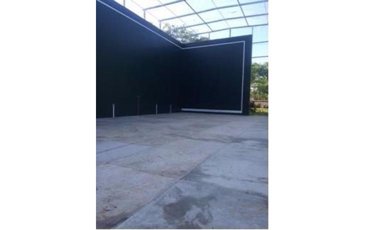 Foto de terreno habitacional en venta en  , andara, othón p. blanco, quintana roo, 1107893 No. 08