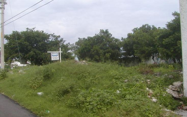 Foto de terreno habitacional en venta en  , andr?s q. roo, cozumel, quintana roo, 1051981 No. 01