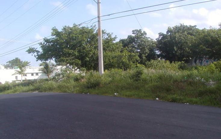 Foto de terreno habitacional en venta en  , andr?s q. roo, cozumel, quintana roo, 1051981 No. 02