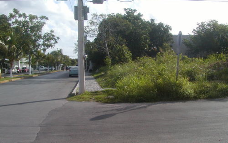 Foto de terreno habitacional en venta en  , andr?s q. roo, cozumel, quintana roo, 1051981 No. 04