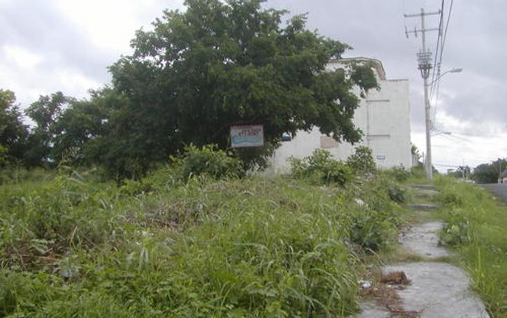 Foto de terreno habitacional en venta en  , andr?s q. roo, cozumel, quintana roo, 1051981 No. 05