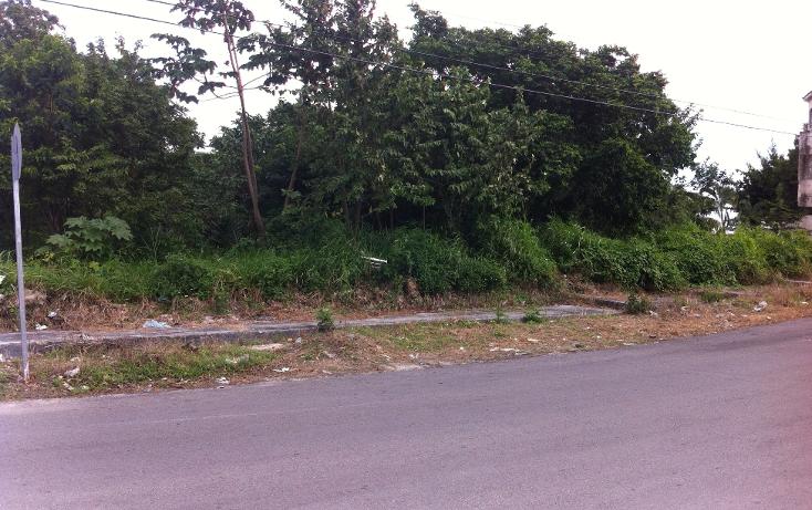 Foto de terreno habitacional en venta en  , andrés q. roo, cozumel, quintana roo, 1051981 No. 07