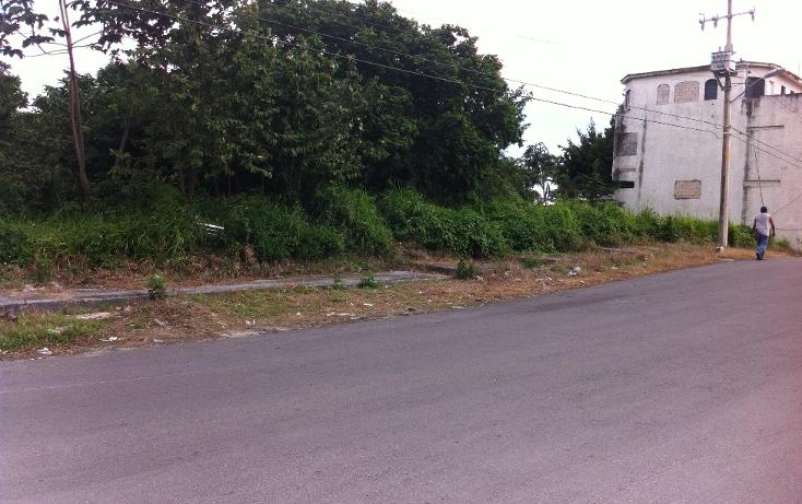 Foto de terreno habitacional en venta en  , andr?s q. roo, cozumel, quintana roo, 1051981 No. 08