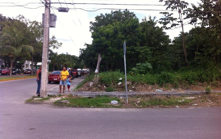 Foto de terreno habitacional en venta en  , andr?s q. roo, cozumel, quintana roo, 1051981 No. 09