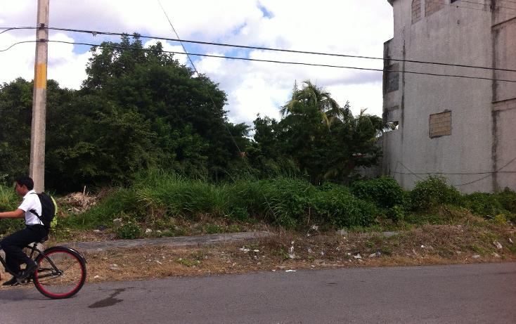 Foto de terreno habitacional en venta en  , andrés q. roo, cozumel, quintana roo, 1051981 No. 10