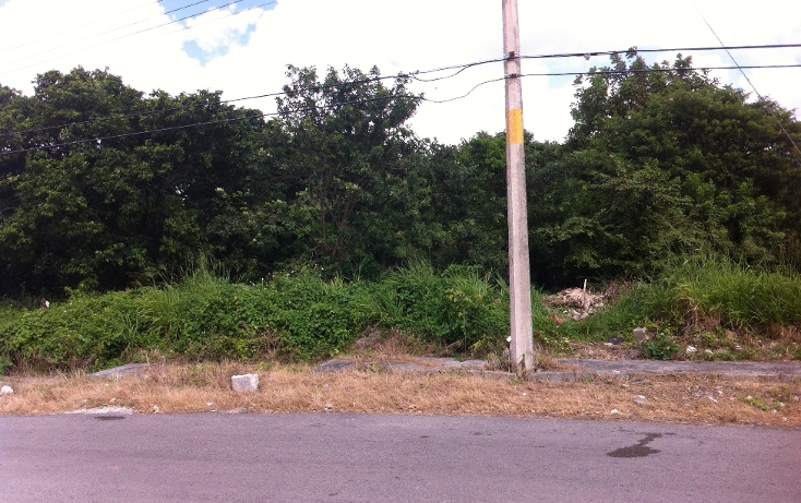 Foto de terreno habitacional en venta en  , andr?s q. roo, cozumel, quintana roo, 1051981 No. 11