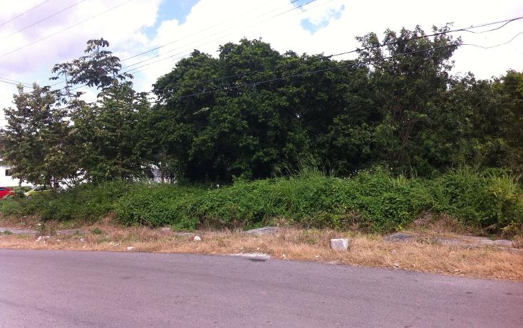 Foto de terreno habitacional en venta en  , andrés q. roo, cozumel, quintana roo, 1051981 No. 12