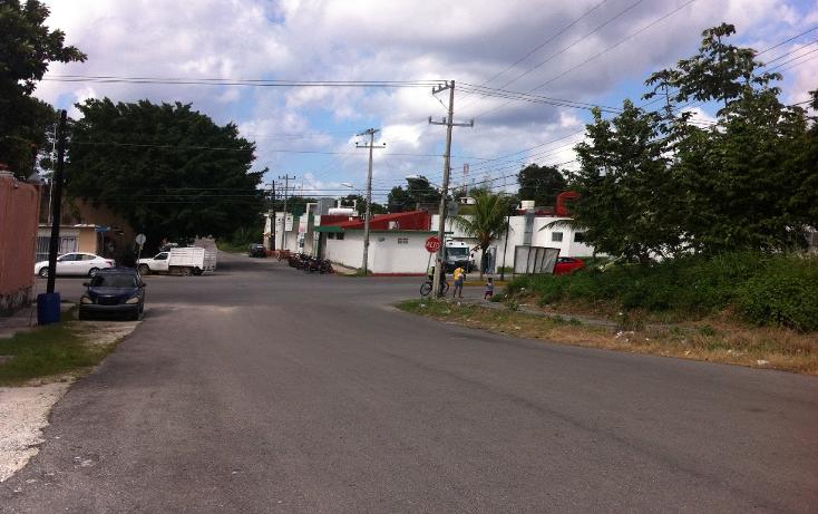 Foto de terreno habitacional en venta en  , andr?s q. roo, cozumel, quintana roo, 1051981 No. 13