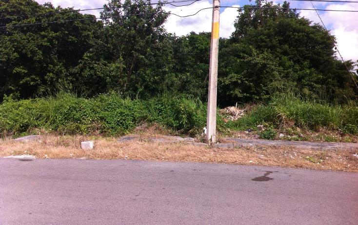 Foto de terreno habitacional en venta en  , andr?s q. roo, cozumel, quintana roo, 1051981 No. 16