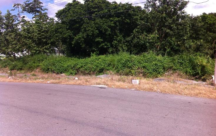 Foto de terreno habitacional en venta en  , andr?s q. roo, cozumel, quintana roo, 1051981 No. 17